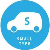 SMALL TYPE
